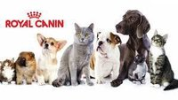 ROYAL CANIN CIBO & DIETE VETERINARIE